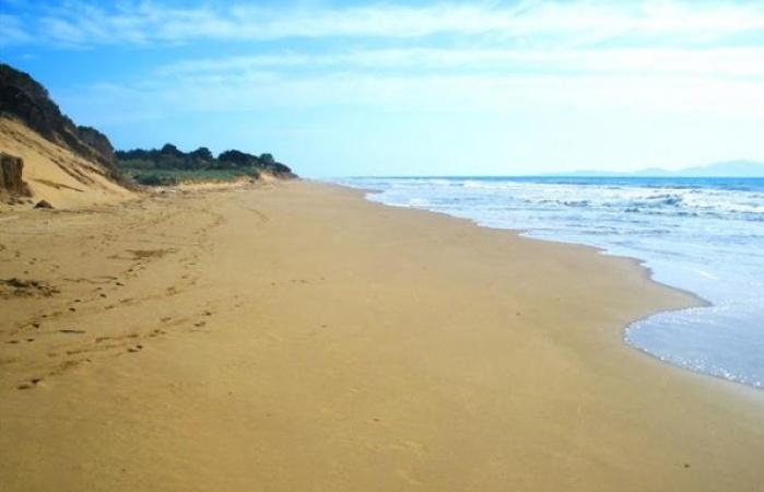Golden beach12_595_450_95