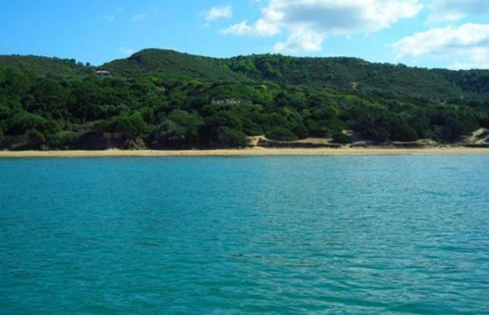 Golden beach3_595_450_95