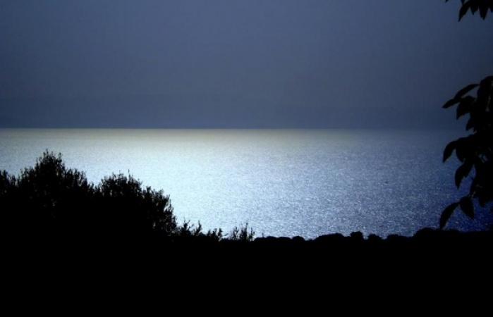 golden beach - kasto3_595_450_95