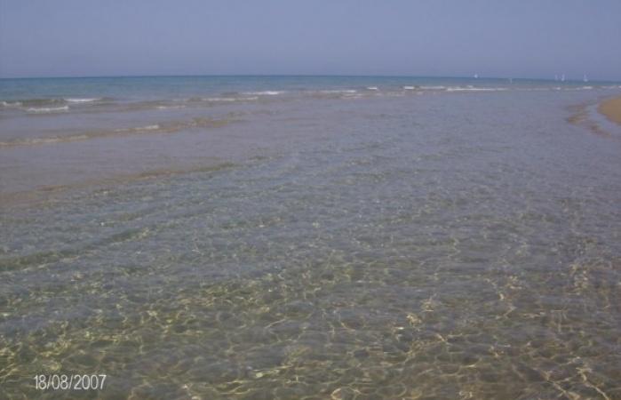golden beach kasto _595_450_95