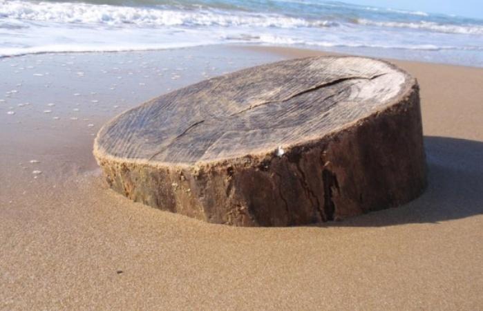 kastro-golden beach2 medium_595_450_95